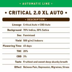 Critical 2.0 XL Auto