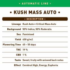 Kush Mass Auto