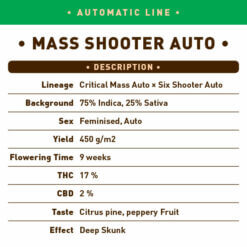 Mass Shooter Auto
