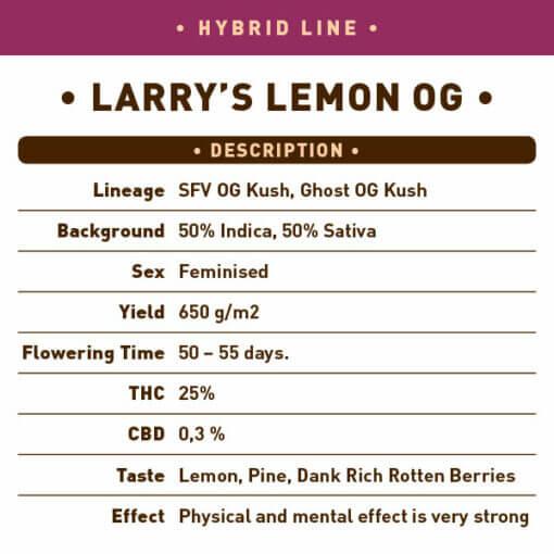Larry's Lemon OG