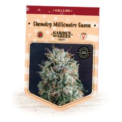 Chemdog Millionaire Guava - Cannabis Seeds - Fruity - Cali Line - Garden of Green
