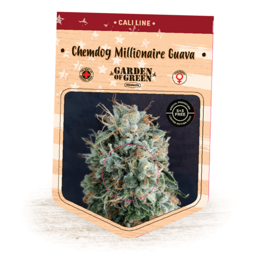 Chemdog Millionaire Guava - Cannabis Seeds - Fruity - Cali Line - Garden of Green