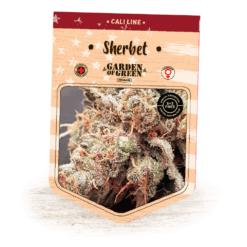 Sherbet - Girl Scout Cookies X Pink Panties | Cali Line | American Cannabis Seeds | Garden of Green
