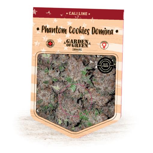 Phantom Cookies Domina -GrandDaddy Purps x Cherry Pie x Black Domina - Cannabis Seeds - Garden of Green
