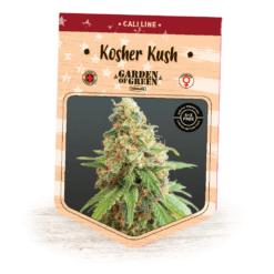 Kosher Kush | Kosher Kush x OG Kush | California Strains | Cannabis Seeds | Garden of Green