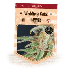 Wedding Cake | Girl Scout Cookies X Cherry Pie | Cannabis Seeds | Cali Line | Garden of Green