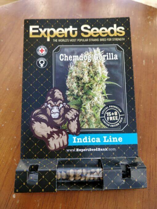 Chemdog Gorilla Expert Seeds 15 pack
