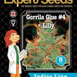 GorrillaGlue4 Lilly front 1
