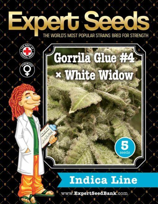 GorrillaGlue4 WhiteWidow front 1