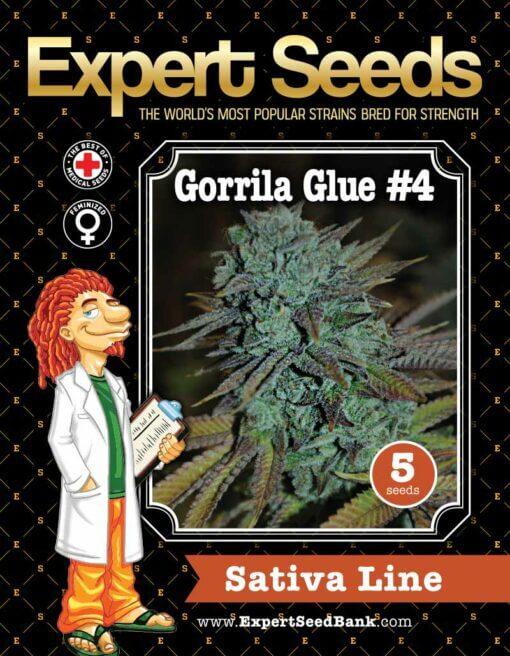 GorrillaGlue4 front 1